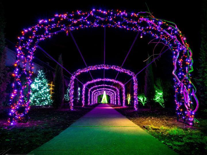 CREDIT Dion%20Degennaro3cr - Cheekwood Gardens Holiday Lights & Dinner November 29